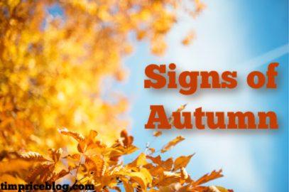 The Sights Of Autumn…