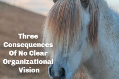 Three Consequences Of No Clear Organizational Vision