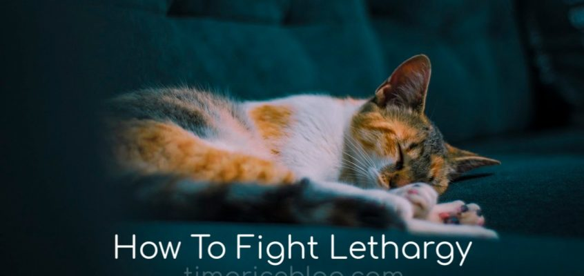 How To Fight Lethargy